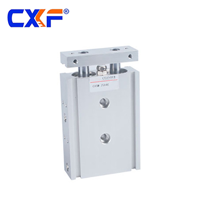 CXS Series Dual Shaft Pneumatic Cylinder